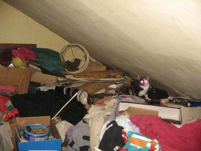 That Hoarders Smell | Just Me With