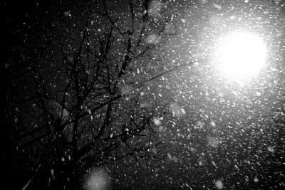 snow movie